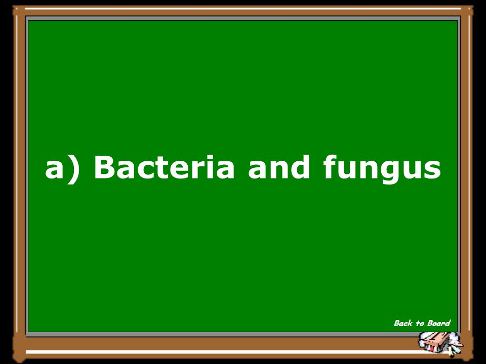 Randy wants to start a cheese manufacturing plant. Which of the microorganisms below would be useful to him as he makes cheese? a)Bacteria and fungus