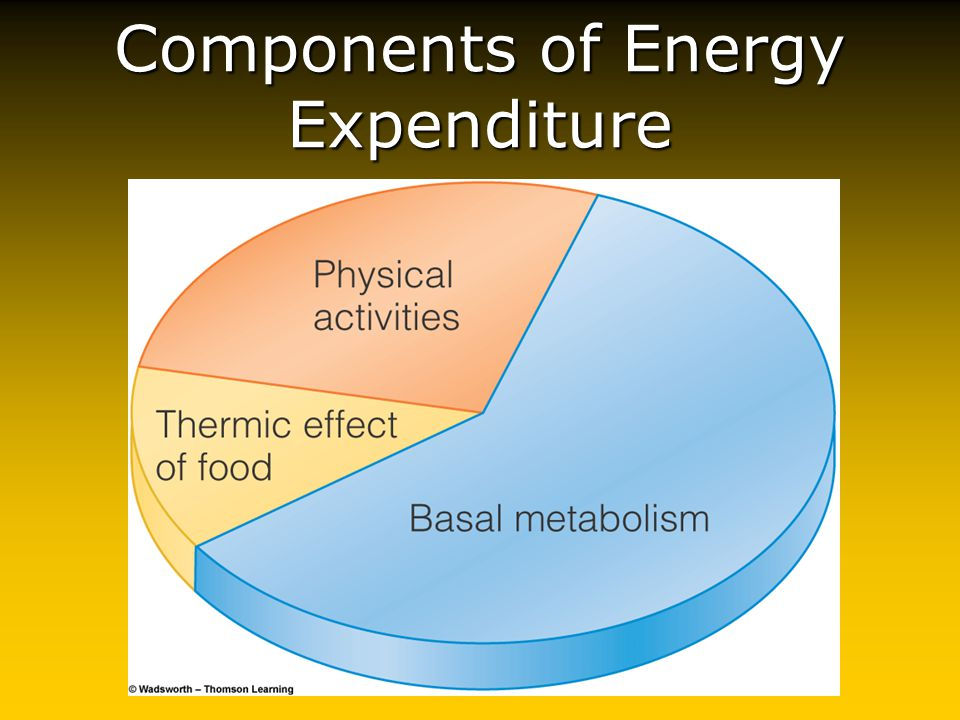 Thermogenesis Basal thermogenesis (heat)-a measure of body's energy expenditure!Basal thermogenesis (heat)-a measure of body's energy expenditure.