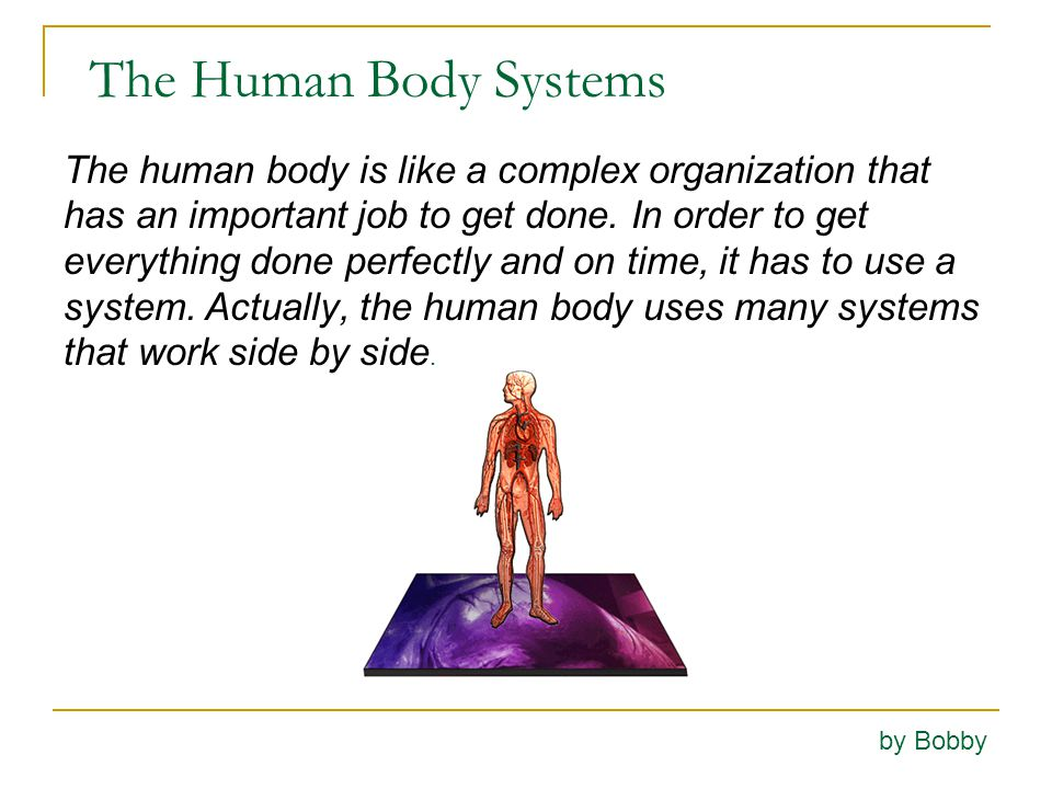 The Body Systems Work Together The heart is like the president of the organization.