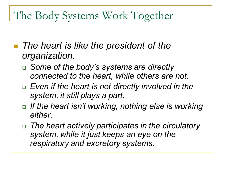 The Body Systems Work Together The heart is like the president of the organization. SSome of the body's systems are directly connected to the heart,