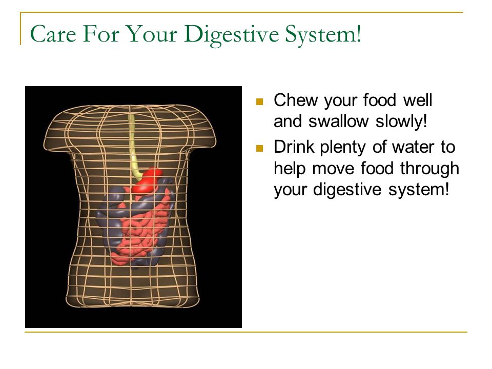Facts About Your Digestive System It takes 2 to 3 weeks to digest gum.