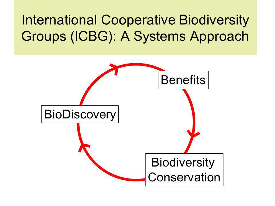 International Cooperative Biodiversity Groups (ICBG): A Systems Approach Benefits Biodiversity Conservation BioDiscovery
