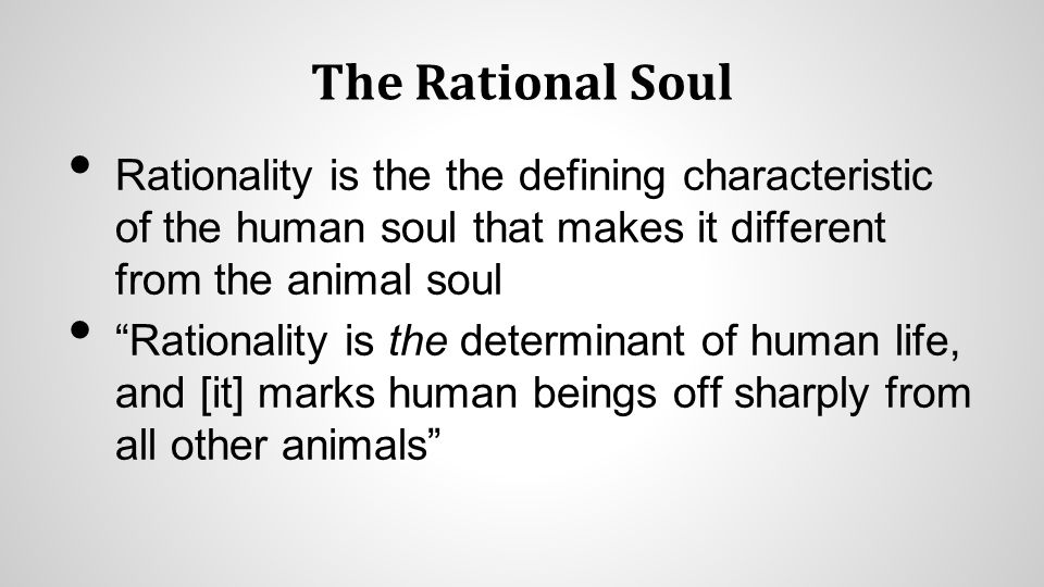 The Rational Soul Rationality is the the defining characteristic of the human soul that makes it different from the animal soul Rationality is the determinant of human life, and [it] marks human beings off sharply from all other animals