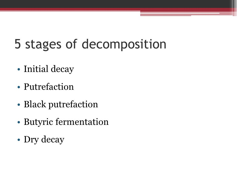 5 stages of decomposition Initial decay Putrefaction Black putrefaction Butyric fermentation Dry decay
