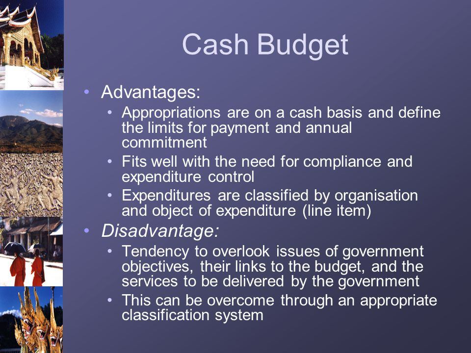 Cash Budget Advantages: Appropriations are on a cash basis and define the limits for payment and annual commitment Fits well with the need for complia