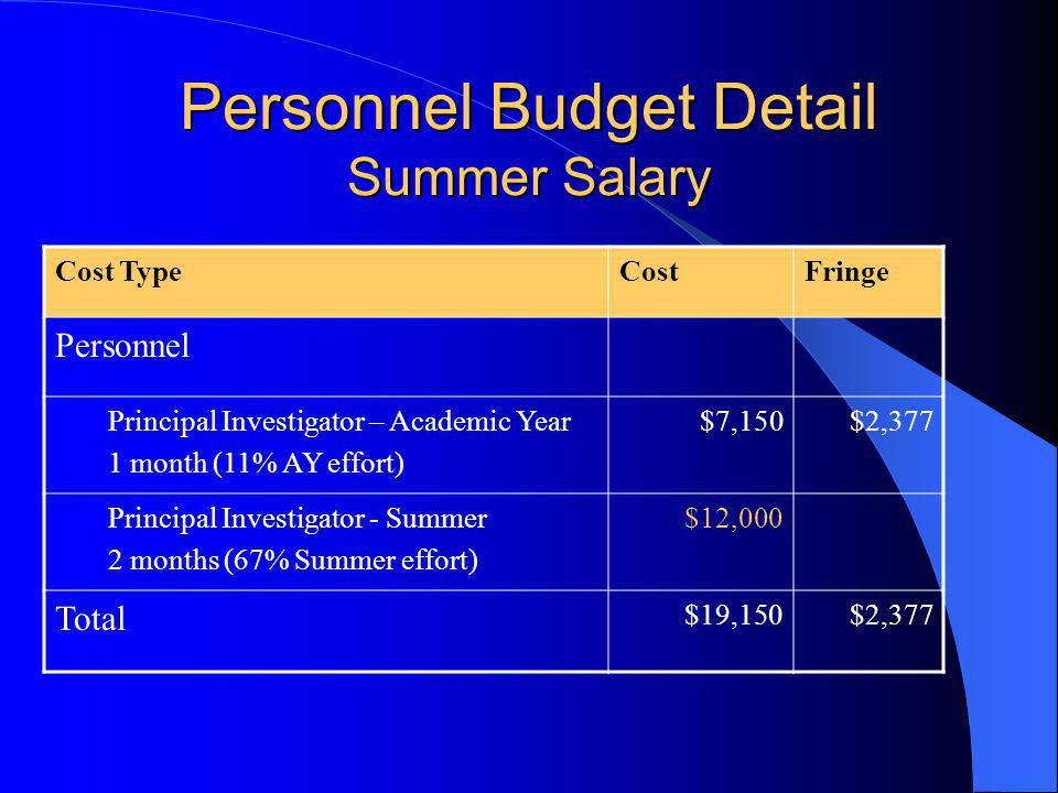 Personnel Budget Detail Summer Salary Cost TypeCostFringe Personnel Principal Investigator – Academic Year 1 month (11% AY effort) $7,150$2,377 Principal Investigator - Summer 2 months (67% Summer effort) $12,000 Total $19,150$2,377