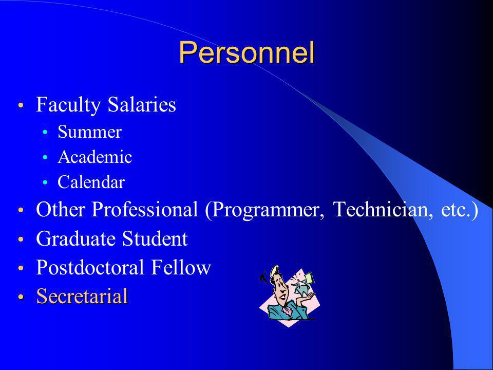 Personnel Faculty Salaries Summer Academic Calendar Other Professional (Programmer, Technician, etc.) Graduate Student Postdoctoral Fellow Secretarial Secretarial