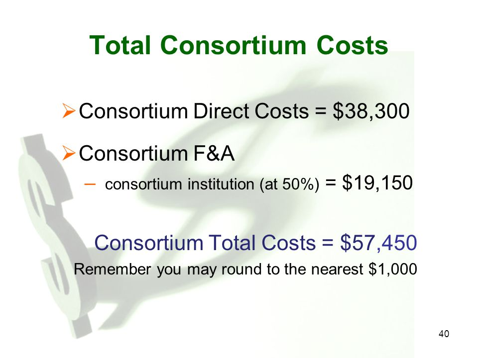 40 Total Consortium Costs  Consortium Direct Costs = $38,300  Consortium F&A – consortium institution (at 50%) = $19,150 Consortium Total Costs = $5