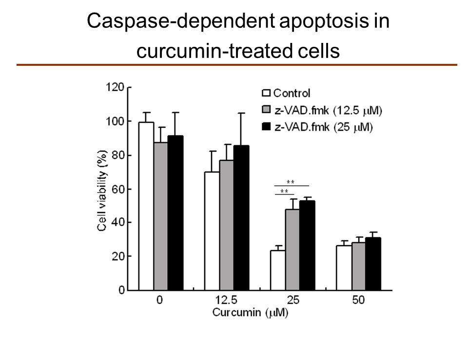 Caspase-dependent apoptosis in curcumin-treated cells