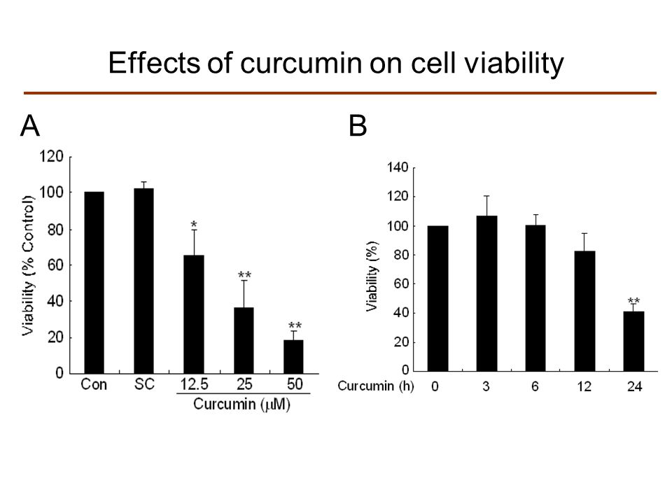 AB Effects of curcumin on cell viability