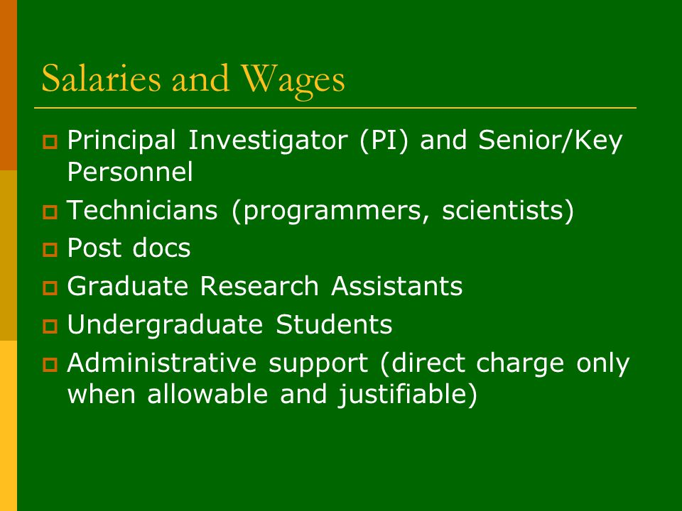 Salaries and Wages  Principal Investigator (PI) and Senior/Key Personnel  Technicians (programmers, scientists)  Post docs  Graduate Research Assistants  Undergraduate Students  Administrative support (direct charge only when allowable and justifiable)