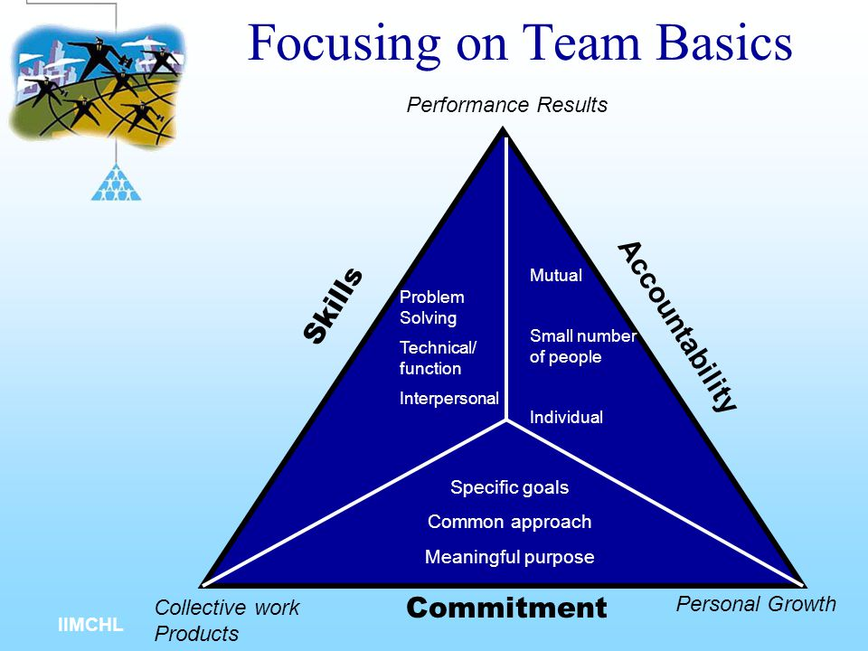 IIMCHL Stages of a Team Life Cycle Infant (stage 1) Adolescent (stage 2) Young Adult (stage 3) Established Performer (stage 4) Disbandment (Stage 5)