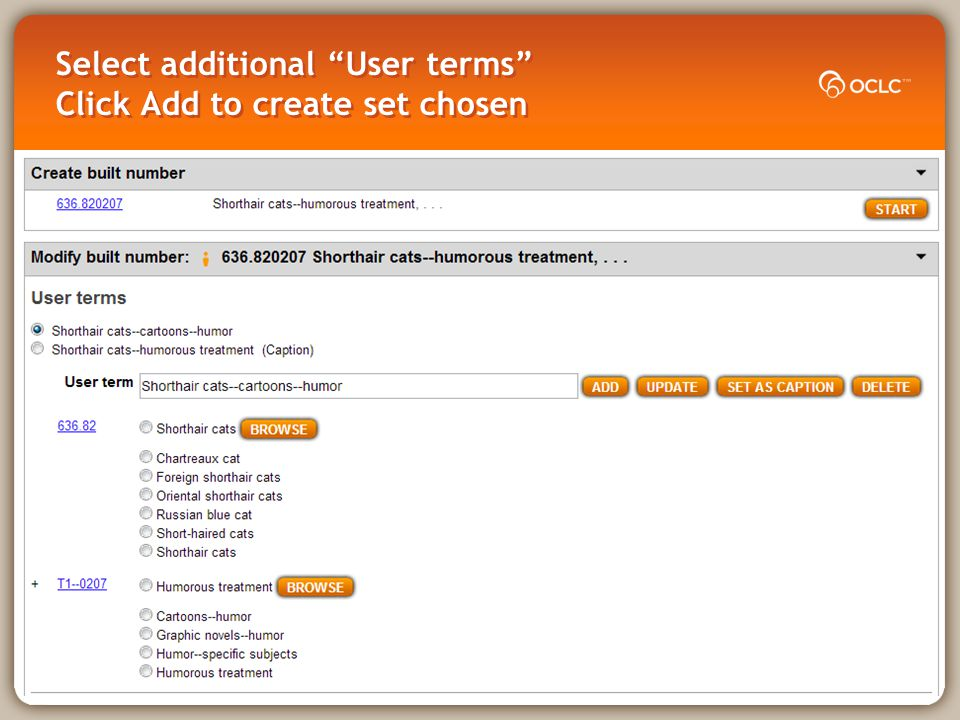 Select additional User terms Click Add to create set chosen