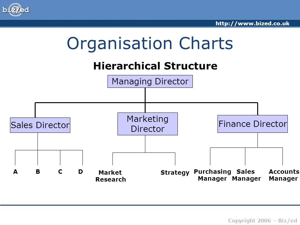 http://www.bized.co.uk Copyright 2006 – Biz/ed Organisation Charts Hierarchical Structure Managing Director Sales Director Marketing Director Finance