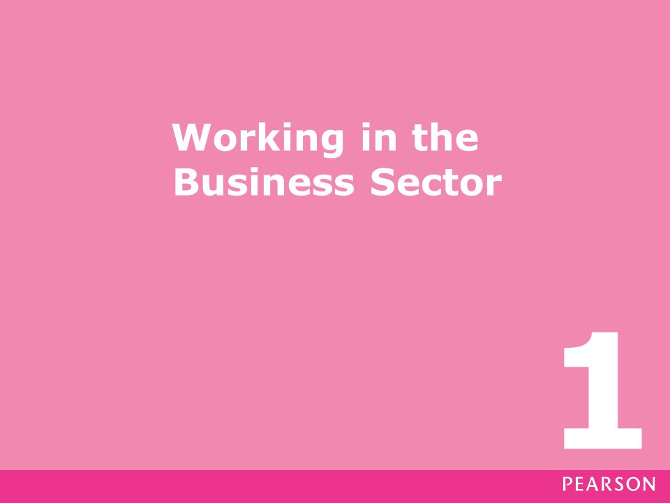Working in the Business Sector 1
