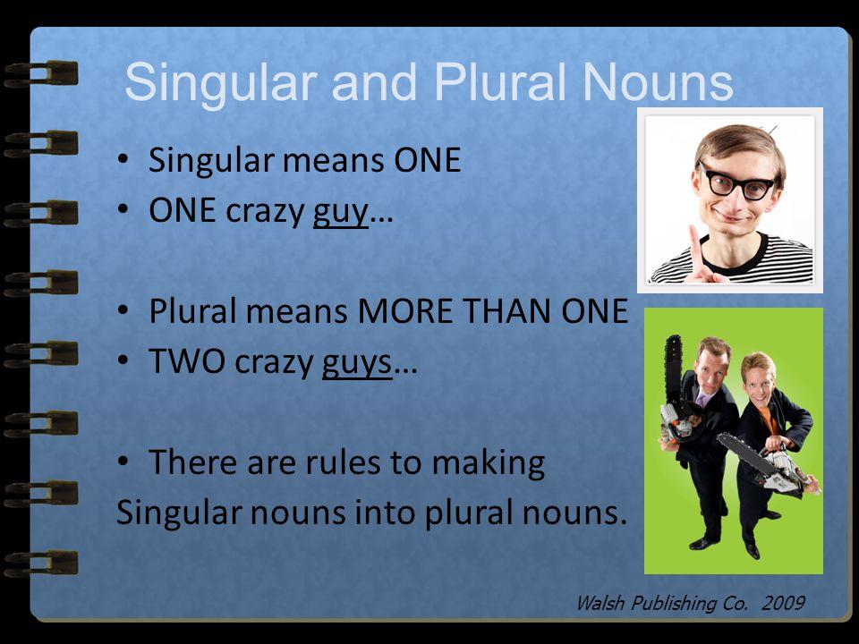 Singular and Plural Nouns Walsh Publishing Co. 2009