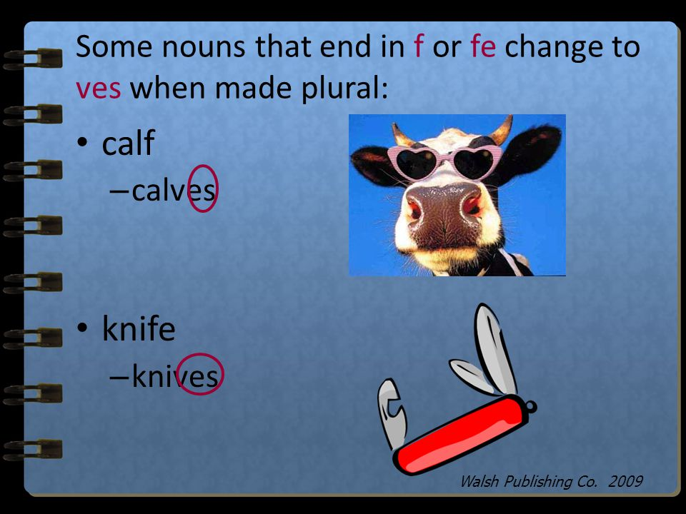 Add ies to make nouns plural that end with a consonant and a y: lady – Ladies fry – fries Walsh Publishing Co. 2009