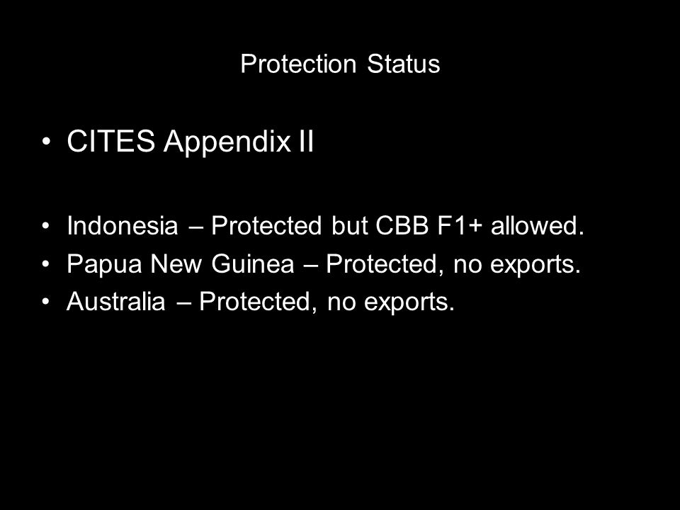 Protection Status CITES Appendix II Indonesia – Protected but CBB F1+ allowed. Papua New Guinea – Protected, no exports. Australia – Protected, no exp