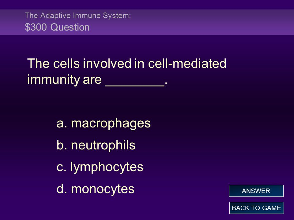The Adaptive Immune System: $300 Question The cells involved in cell-mediated immunity are ________. a. macrophages b. neutrophils c. lymphocytes d. m