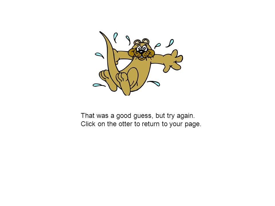 That was a good guess, but try again. Click on the otter to return to your page.