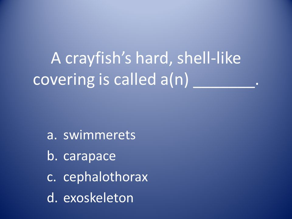 A crayfish's hard, shell-like covering is called a(n) _______. a.swimmerets b.carapace c.cephalothorax d.exoskeleton