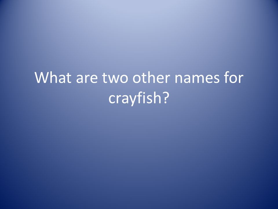 What are two other names for crayfish?