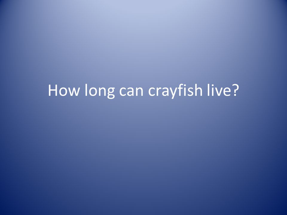 How long can crayfish live?