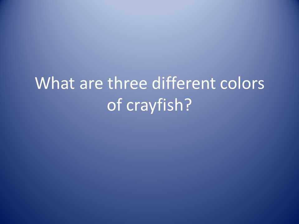 What are three different colors of crayfish?