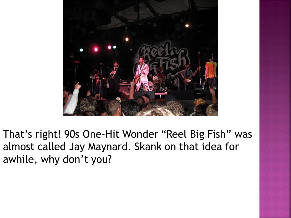That's right. 90s One-Hit Wonder Reel Big Fish was almost called Jay Maynard.
