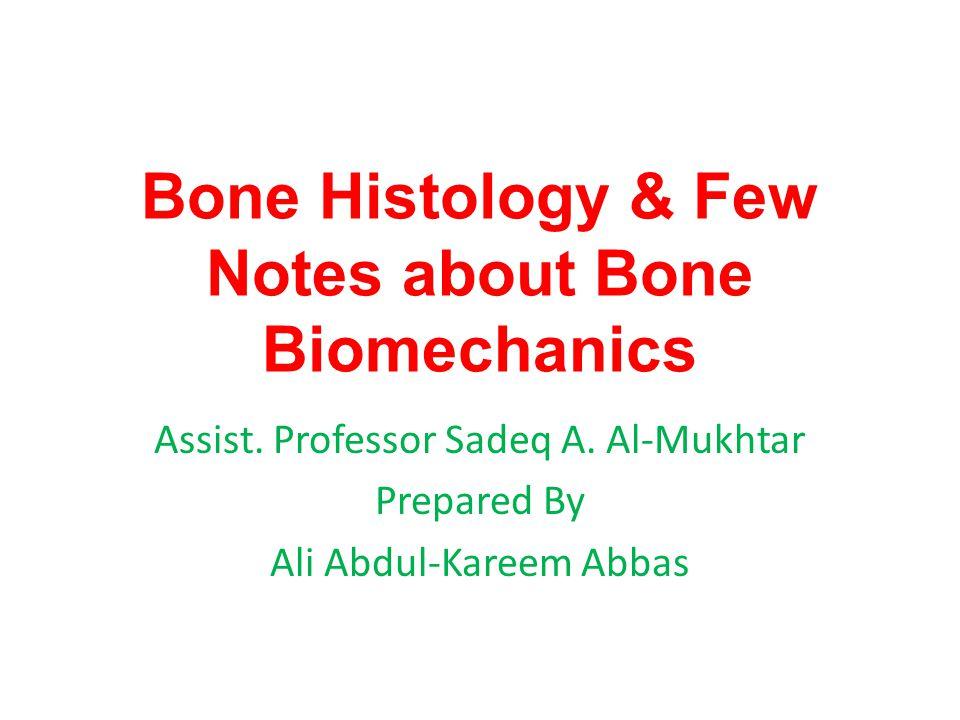 Bone consists of extracellular bone matrix and bone cells.