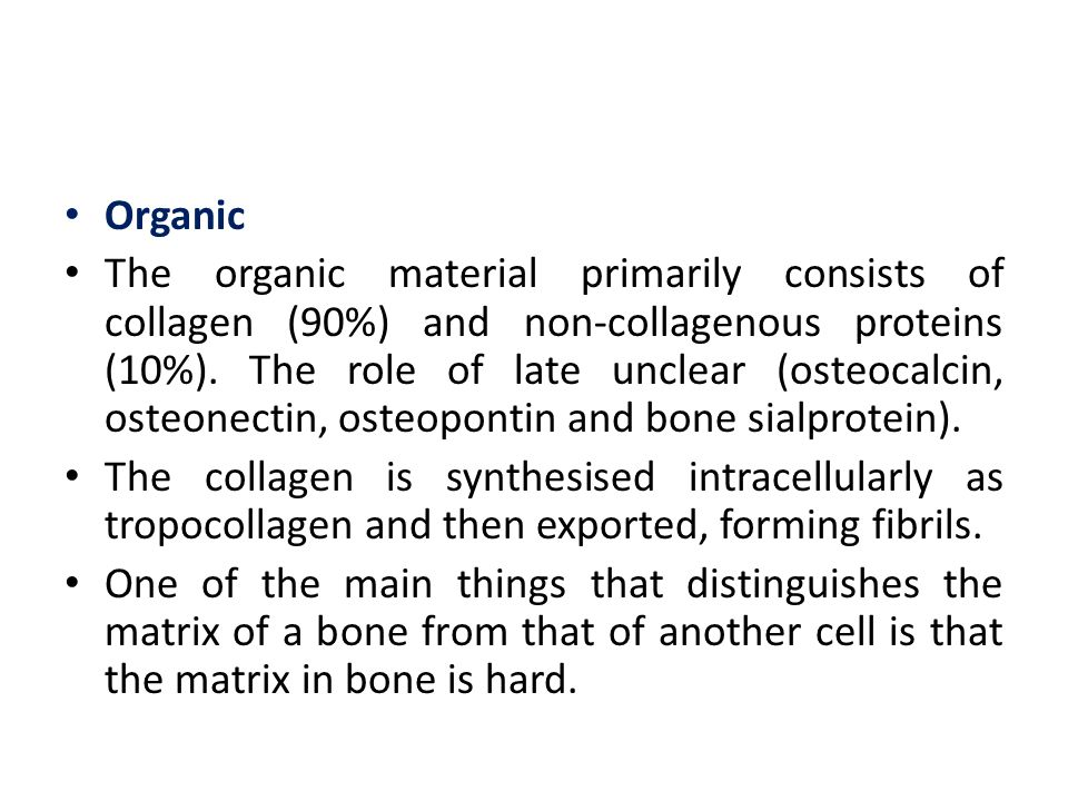 Woven and Lamellar Bone Bone tissue is classified as either woven or lamellar bone according to the organization of collagen fibers within the bone matrix.