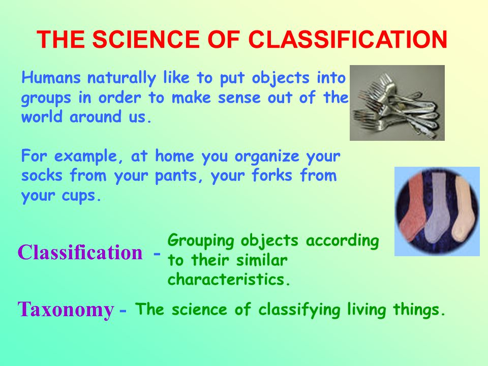 THE SCIENCE OF CLASSIFICATION Classification - Taxonomy - Grouping objects according to their similar characteristics. The science of classifying livi
