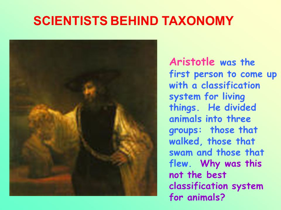 SCIENTISTS BEHIND TAXONOMY Aristotle was the first person to come up with a classification system for living things. He divided animals into three gro