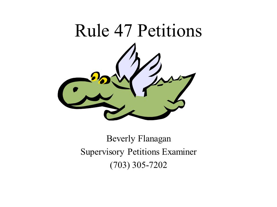 Rule 47 Petitions Beverly Flanagan Supervisory Petitions Examiner (703) 305-7202
