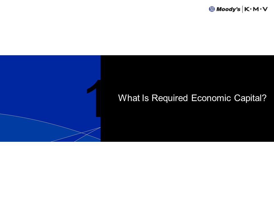 1 What Is Required Economic Capital?