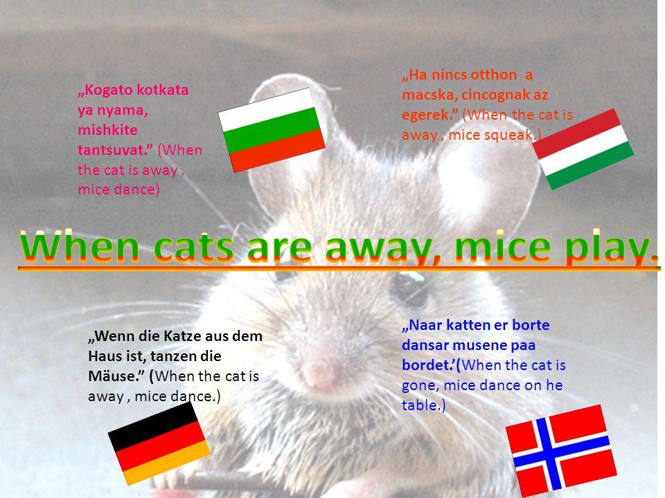 """Kogato kotkata ya nyama, mishkite tantsuvat. (When the cat is away, mice dance) ""Ha nincs otthon a macska, cincognak az egerek. (When the cat is away, mice squeak.) ""Wenn die Katze aus dem Haus ist, tanzen die Mäuse. (When the cat is away, mice dance.) ""Naar katten er borte dansar musene paa bordet.'(When the cat is gone, mice dance on he table.)"