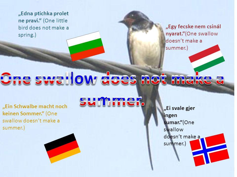 """""""Edna ptichka prolet ne pravi. (One little bird does not make a spring.) """"Egy fecske nem csinál nyarat. (One swallow doesn't make a summer.) """"Ein Schwalbe macht noch keinen Sommer. (One swallow doesn't make a summer.) """"Ei svale gjer ingen sumar. (One swallow doesn't make a summer.)"""
