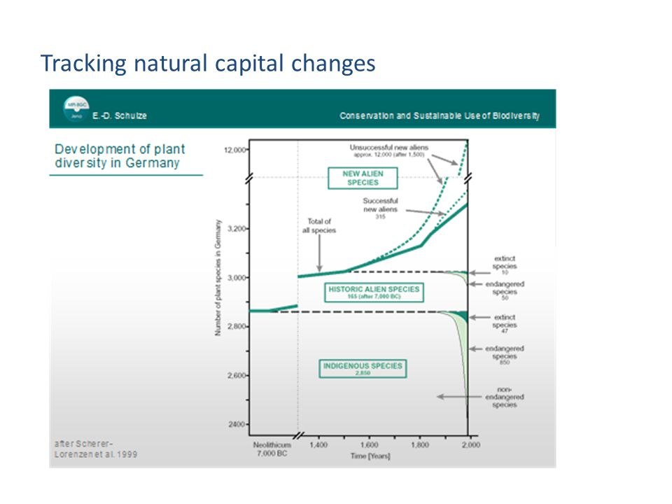 Tracking natural capital changes