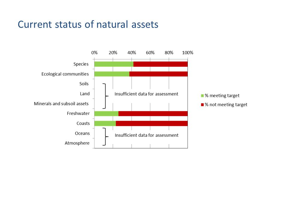 Current status of natural assets