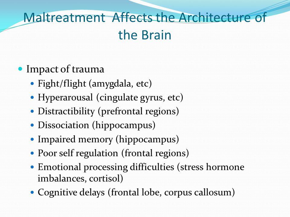 Maltreatment Affects the Architecture of the Brain Impact of trauma Fight/flight (amygdala, etc) Hyperarousal (cingulate gyrus, etc) Distractibility (