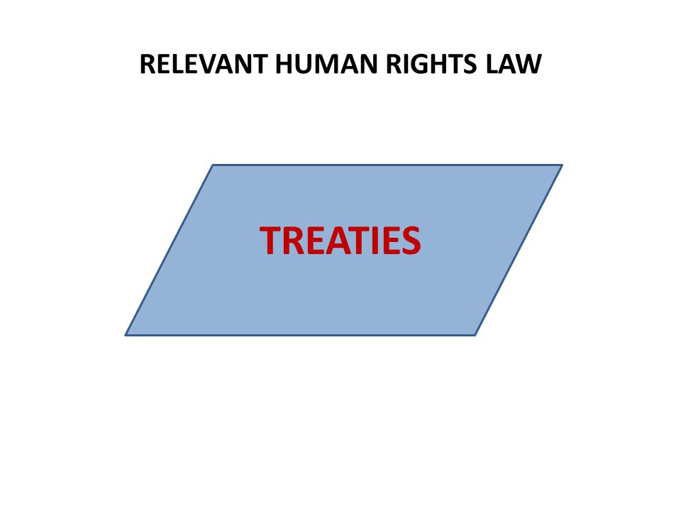 RELEVANT HUMAN RIGHTS LAW TREATIES