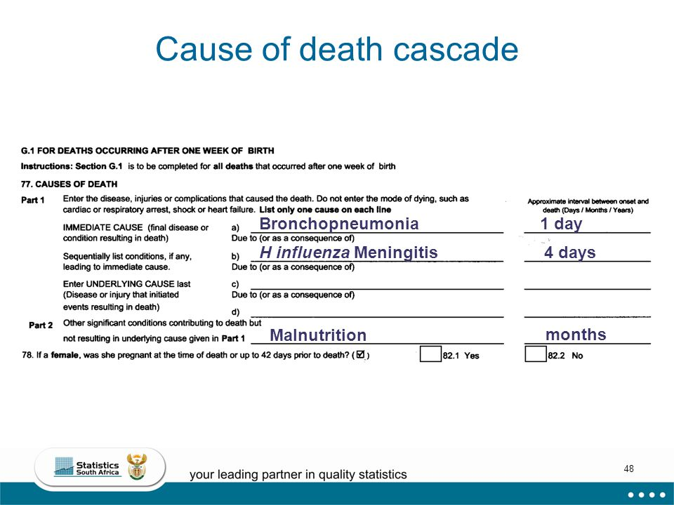 48 Cause of death cascade Bronchopneumonia H influenza Meningitis 4 days 1 day Malnutrition months