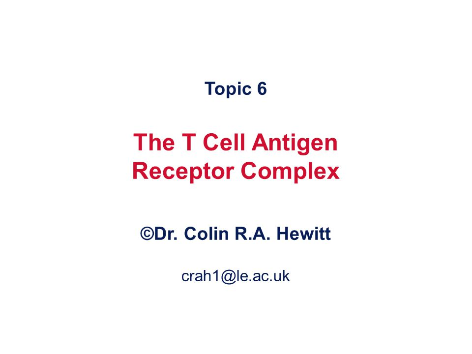 Each clone of T cells expresses a single TcR specificity How the TcR was discovered The similarities and differences between TcR and antibodies The structure and organisation of the TcR genes Somatic recombination in TcR genes Generation of diversity in TcR Structure function relationship of TcR Why TcR do not undergo somatic mutation What you should know by the end of this lecture