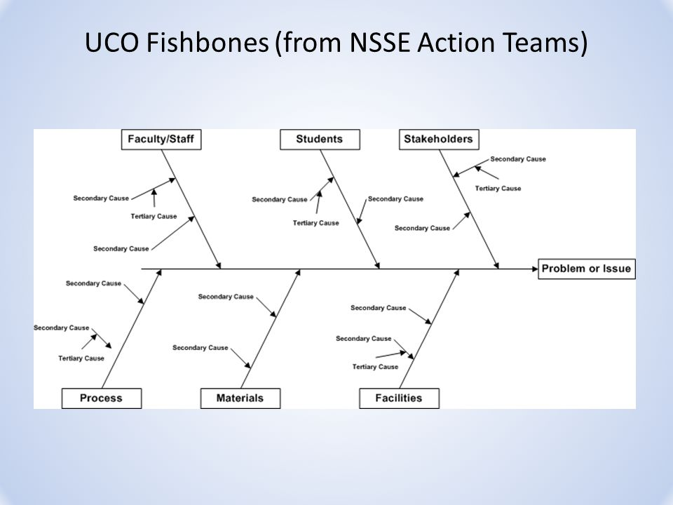UCO Fishbones (from NSSE Action Teams)