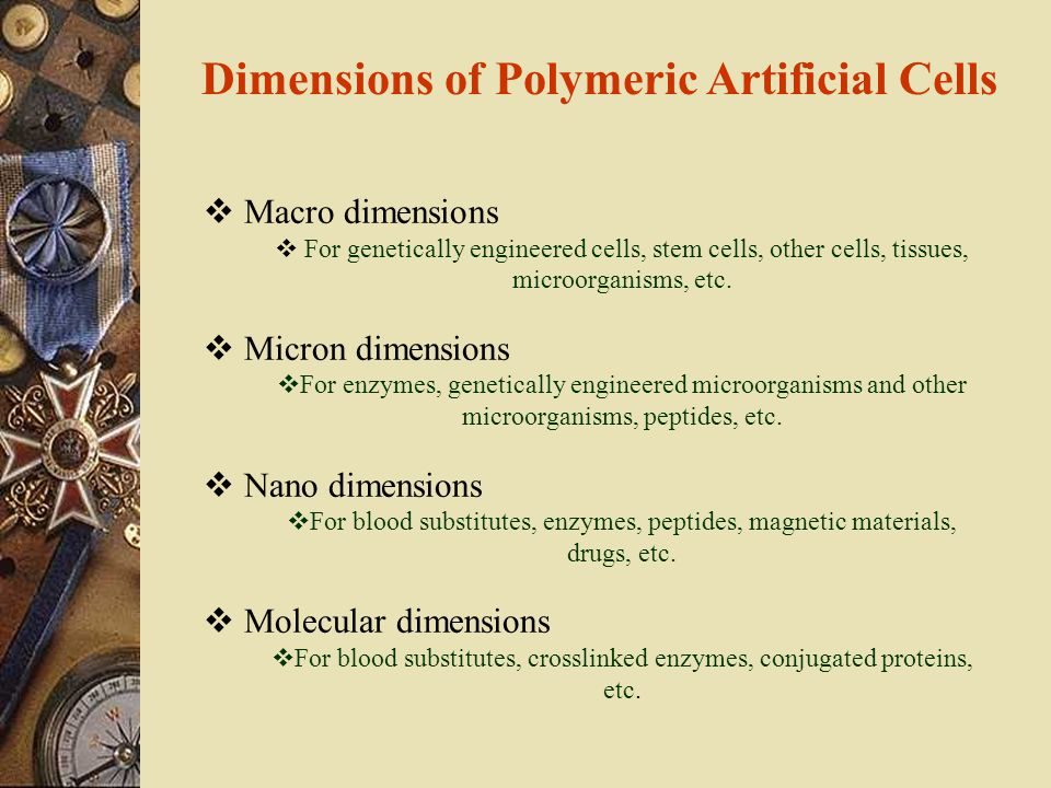  Macro dimensions  For genetically engineered cells, stem cells, other cells, tissues, microorganisms, etc.  Micron dimensions  For enzymes, genet