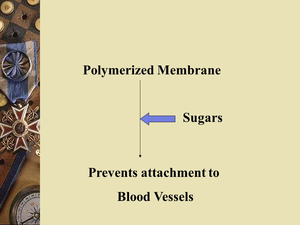 Polymerized Membrane Prevents attachment to Blood Vessels Sugars
