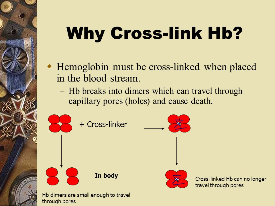 Why Cross-link Hb? + Cross-linker In body  Hemoglobin must be cross-linked when placed in the blood stream. – Hb breaks into dimers which can travel