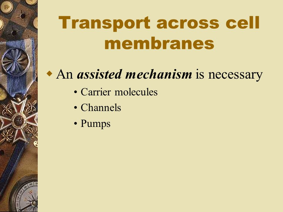 Transport across cell membranes  An assisted mechanism is necessary Carrier molecules Channels Pumps