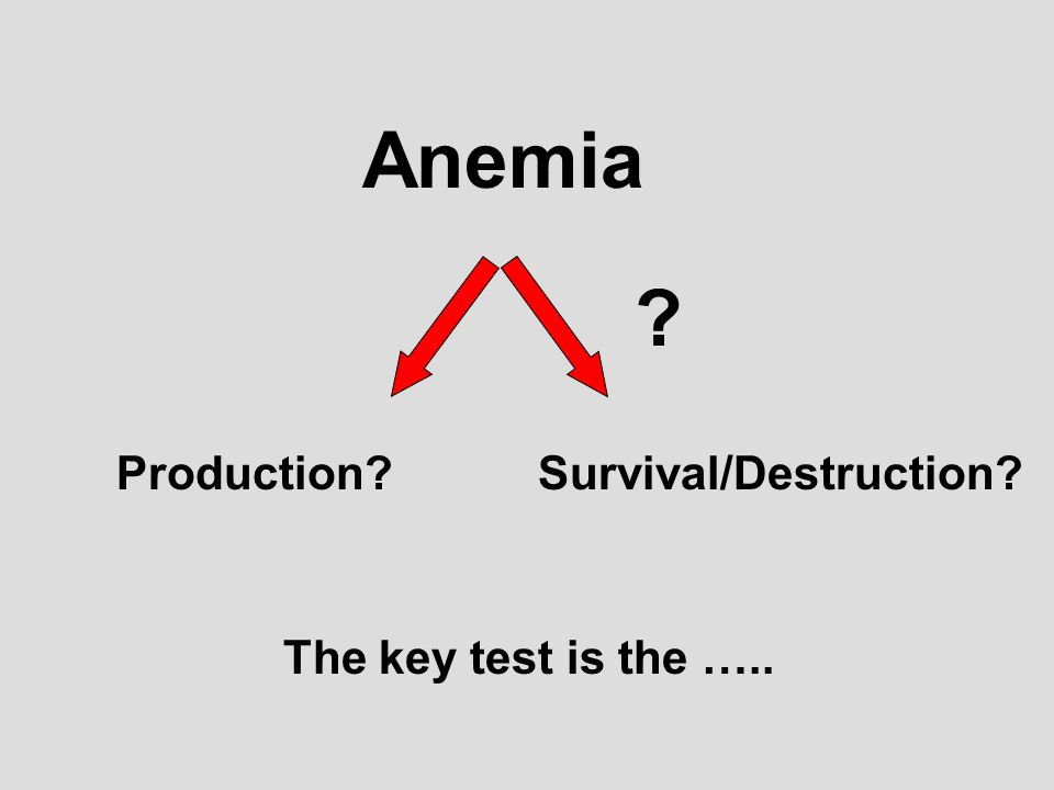Anemia Production?Survival/Destruction? The key test is the ….. ?