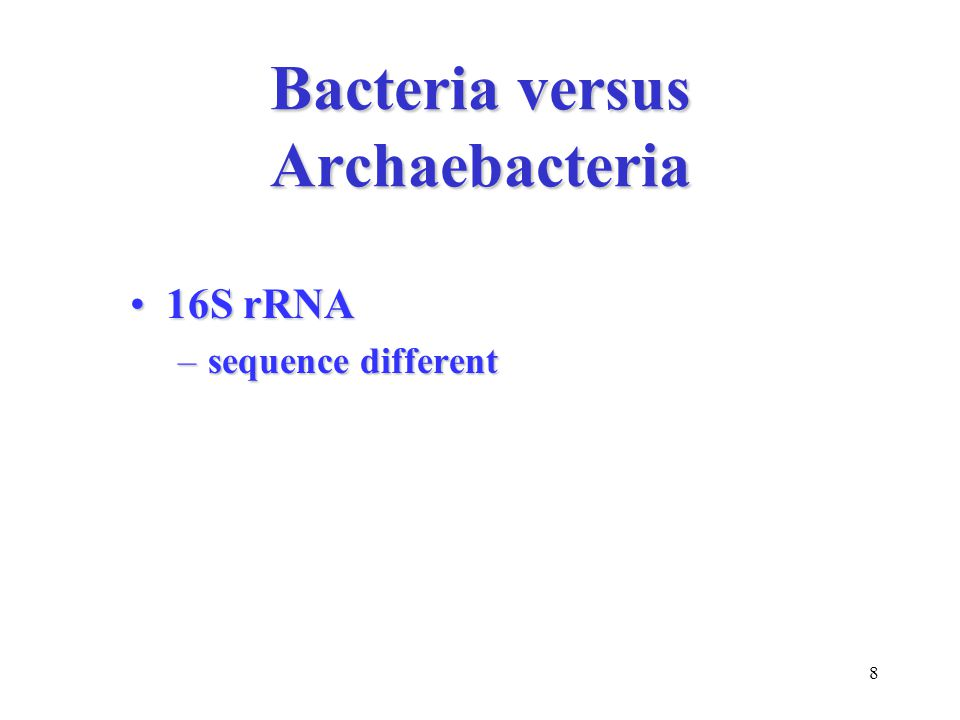 8 Bacteria versus Archaebacteria 16S rRNA16S rRNA –sequence different